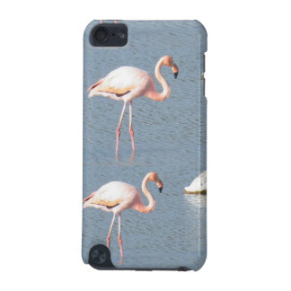 Wild Pink Flamingos iPod Touch (5th Generation) Cover