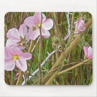 Wild Pink Hibiscus in Salt Marsh Items Mouse Pad