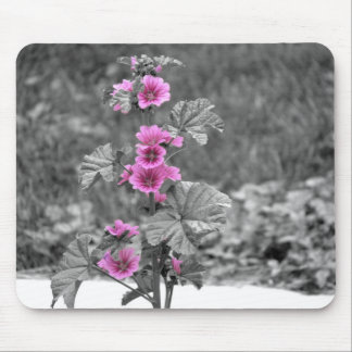 Wild Pink mouse pad