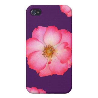 Wild Pink Rose 4  iPhone 4 Case