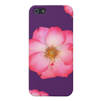 Wild Pink Rose iPhone 5 iPhone 5 Cover