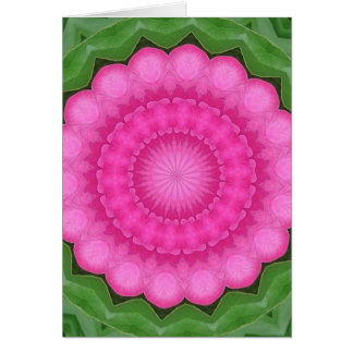 Wild pink rose of India pattern Card