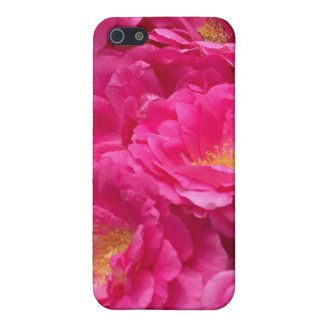 Wild Pink Roses Case For iPhone 5