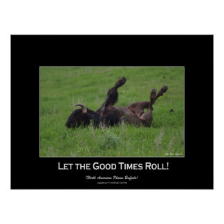 Wild Plains Bufffalo Rolling Wildlife (small size) Poster