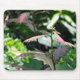 Wild Plant Mouse Pad
