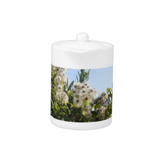 Wild plant with white flowers in the bush teapot