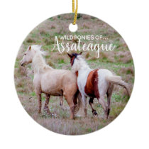 Wild Ponies of Assateague Christmas Ornament