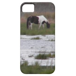 Wild Pony of Assateague Island, VA iPhone 5 Case