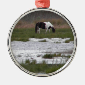 Wild Pony of Assateague Island, VA Metal Ornament