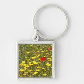 Wild Poppies and Daisys Keychain