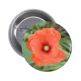 Wild Poppy Flower Button
