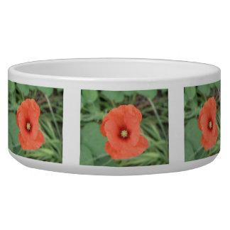 Wild Poppy Flower Dog Bowl