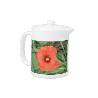 Wild Poppy Flowers Teapot