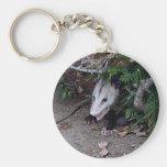 Wild Possum Basic Round Button Keychain