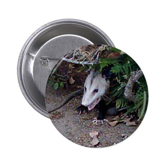 Wild Possum Button