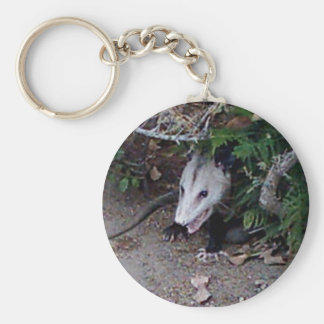 Wild Possum Keychain