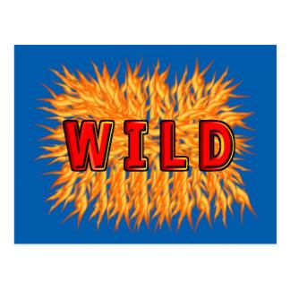 wild postcard