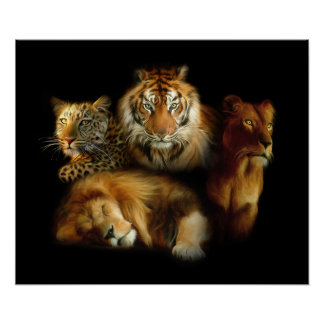 Wild Predators Poster
