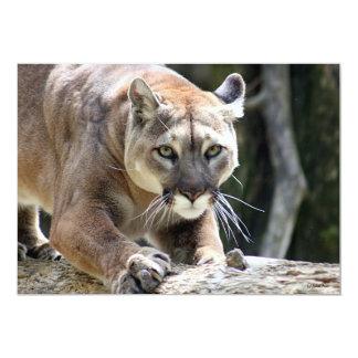 Wild Puma Card