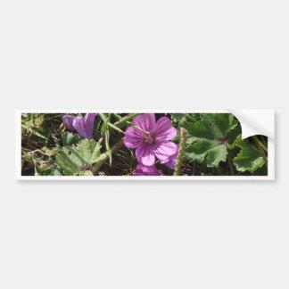 Wild Purple Cranesbill Bumper Sticker