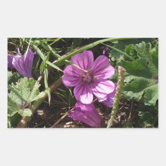 Wild Purple Cranesbill Rectangular Sticker