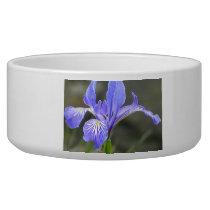 Wild Purple Iris Bowl