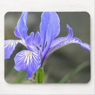Wild Purple Iris Mouse Pad