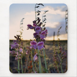 Wild Purple Snapdragons Mouse Pad