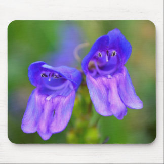 Wild Purple Snapdragons Mousepads