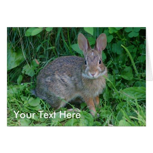 Wild Rabbit Animal Nature Photo Card