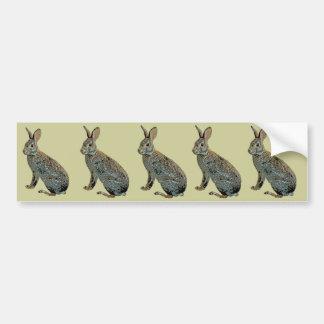 Wild Rabbit Bumper Sticker