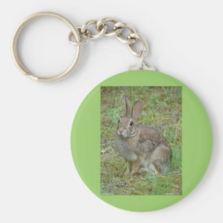 Wild Rabbit Eastern Cottontail Apparel and Gifts Keychain