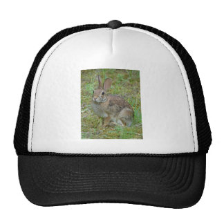 Wild Rabbit Eastern Cottontail Apparel and Gifts Trucker Hat