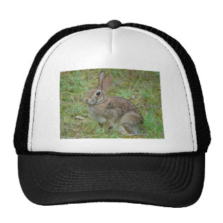 Wild Rabbit Eastern Cottontail II Apparel & Gifts Trucker Hat