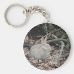 Wild rabbit in the woods key chain