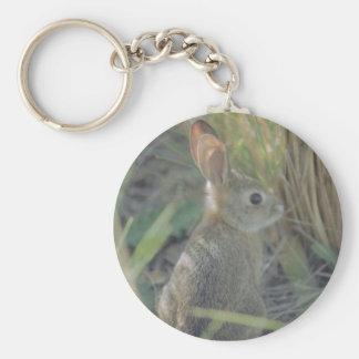 Wild Rabbit Keychain