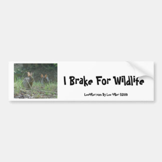 Wild Rabbits Eastern Cottontail Pair Apparel Gifts Bumper Sticker