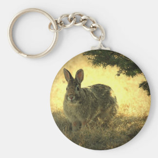 Wild Rabbits Keychain