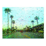 Wild Rain Postcard