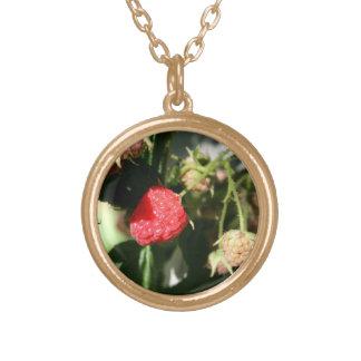 Wild Raspberries Gold Finish Necklace