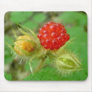 Wild Raspberries Mousepad
