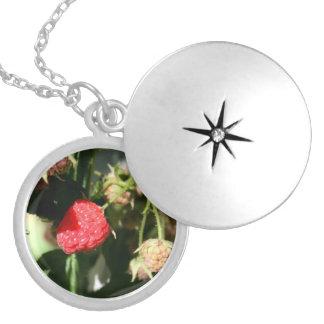 Wild Raspberries Silver-plated Locket