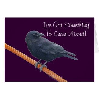 Wild Raven Wildlife Photo Gift Greeting Card
