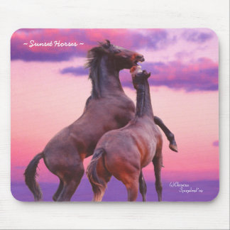 Wild Rearing Stallions Horses Sunrise Mousepad