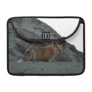Wild Red Fox Animal Wildlife MacBook Sleeves