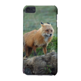 Wild Red Fox Animal Wildlife Touch iPod Case