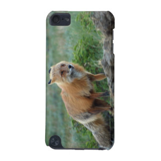 Wild Red Fox Animal Wildlife Touch iPod Case iPod Touch 5G Cover