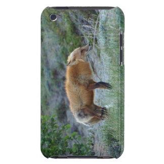 Wild Red Fox Animal Wildlife Touch iPod Case