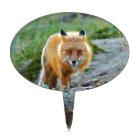 Wild Red Fox Vixen Wildlife Photo Art Cake Topper