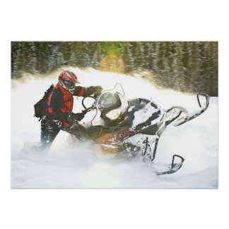 Wild Ride Snowmobile Print